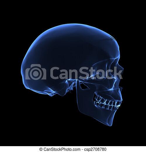 Röntgenschädel - csp2708780