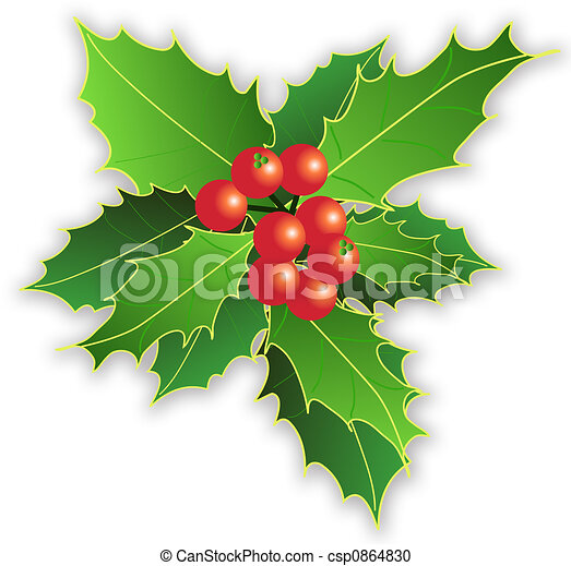 xmas leaves and berries - csp0864830