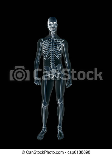 Xray, x-ray of the human male body. - csp0138898