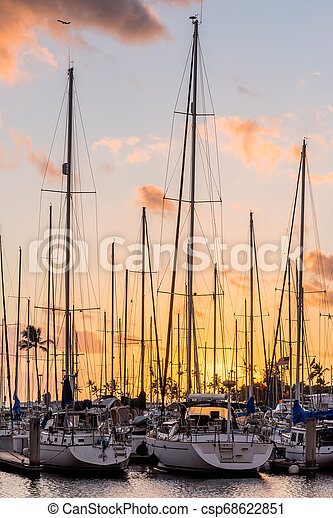 Yachts at sunset at the Ala Wai Small Boat Harbor in Honolulu, Hawaii with a small plane flying overhead - csp68622851