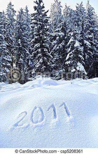 Year 2011 written in Snow - csp5208361