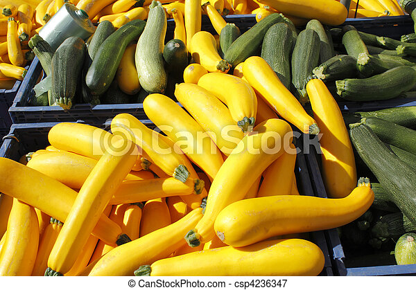 Yellow and green squash for sale. - csp4236347