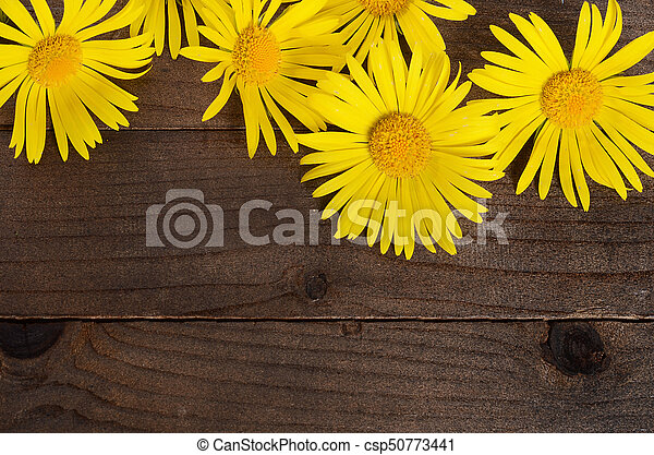Yellow chamomile on wooden background - csp50773441