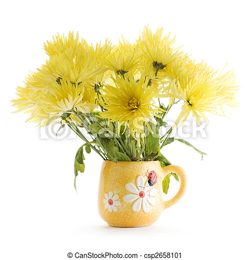 Yellow Chrysanthemum Flowers In Vase On White Background