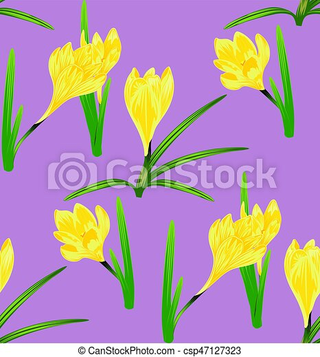 Yellow crocus flowers spring flowers yellow blooming crocus or yellow crocus flowers csp47127323 mightylinksfo