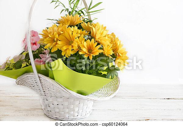 Yellow daisies - csp60124064