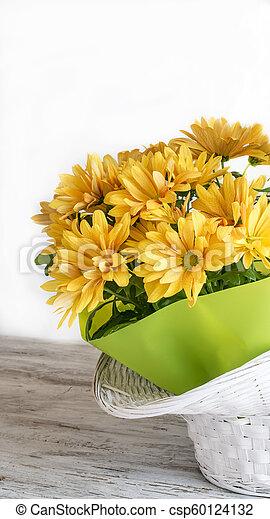 Yellow daisies - csp60124132