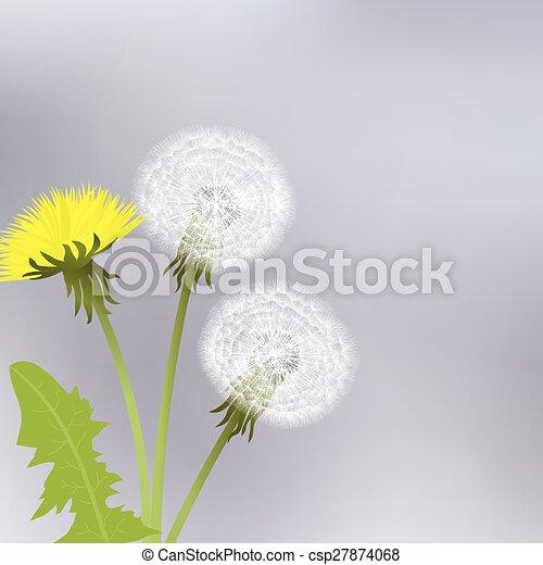 Yellow dandelion flowers yellow dandelion flowers csp27874068 mightylinksfo