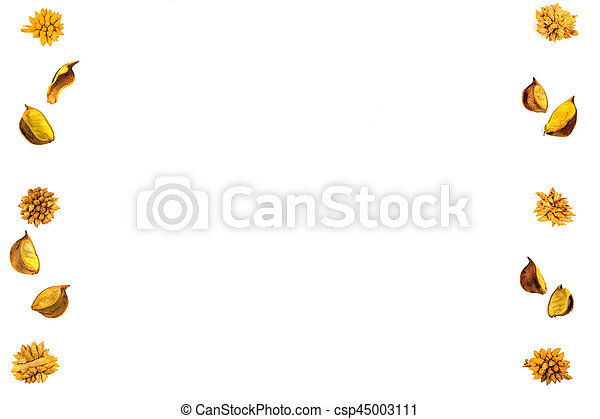 Yellow dried flowers, plants border frame on white background. Top view, flat lay. - csp45003111