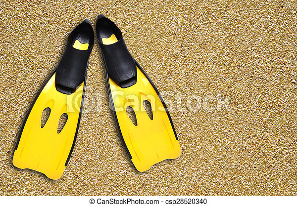 yellow fins and sand beach - csp28520340