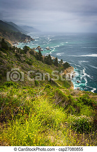 Yellow flowers and view of the Pacific Coast, in Big Sur, California. - csp27080855