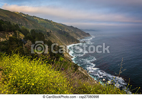 Yellow flowers and view of the Pacific Coast, in Big Sur, California. - csp27080998