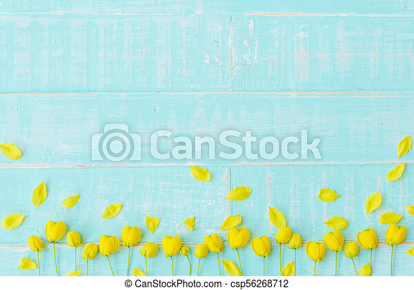 Yellow flowers on a pastel bright blue wooden background spring and yellow flowers on a pastel bright blue wooden background spring and summer concept mightylinksfo