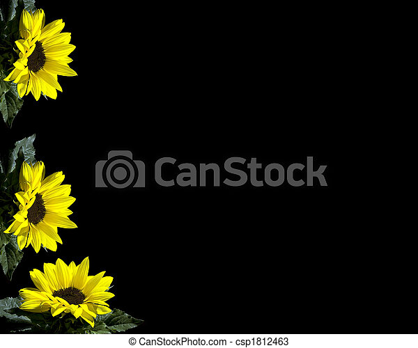 Yellow flowers on a black background yellow flowers csp1812463 mightylinksfo