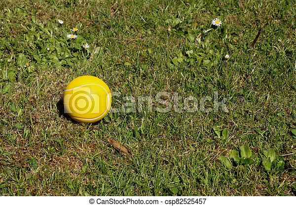 Yellow Foam Ball Lying in a Garden - csp82525457