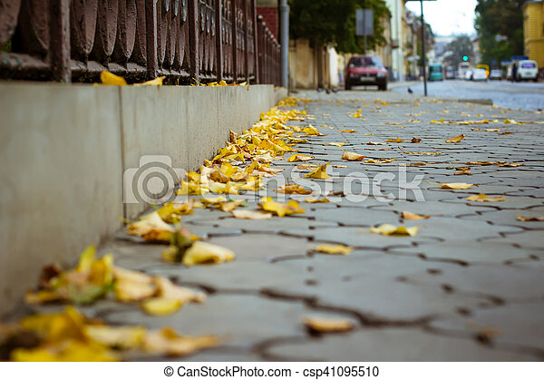 Yellow leaves on the sidewalk in the city - csp41095510