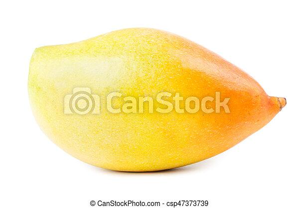 Yellow mango fruit isolated - csp47373739