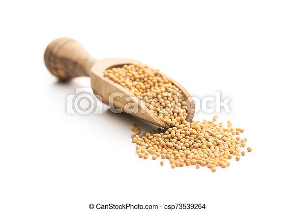 Yellow mustard seeds. - csp73539264