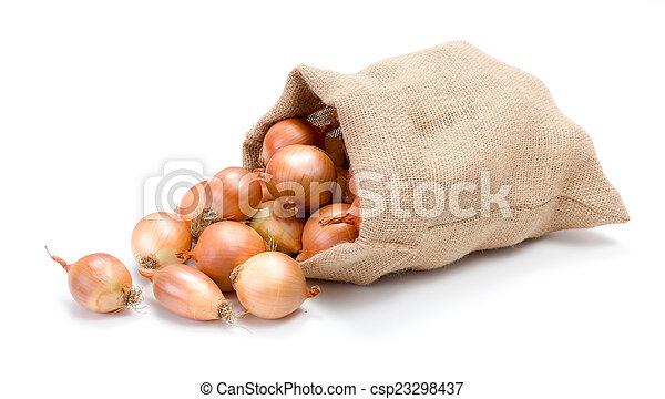 Yellow onions in burlap bag - csp23298437