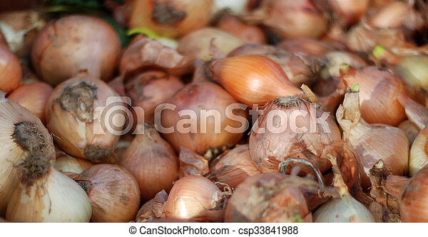 Yellow onions - csp33841988