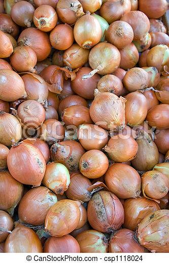 Yellow onions - csp1118024