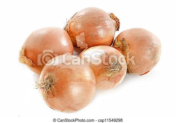 yellow onions - csp11549298