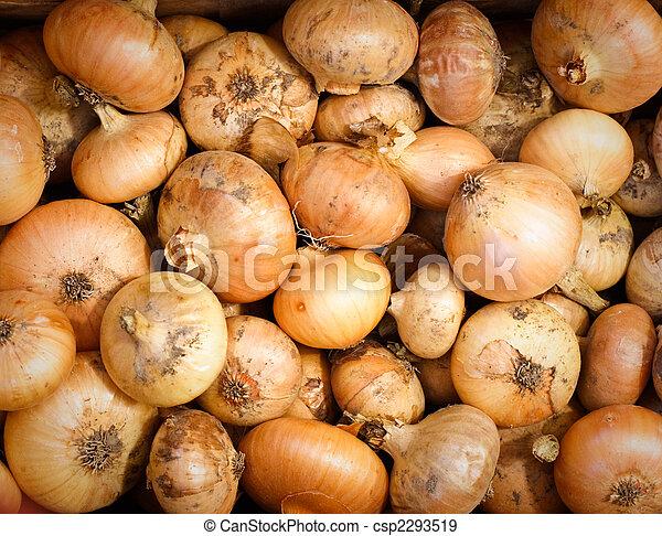 Yellow Onions - csp2293519
