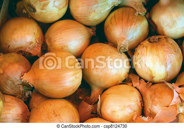 Yellow Onions - csp8124730
