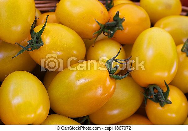Yellow Plum Tomatoes - csp11867072