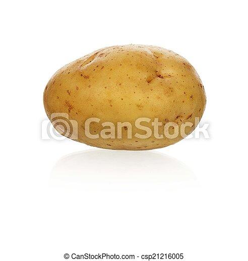 Yellow potato - csp21216005