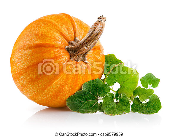 yellow pumpkin vegetable with green leaves - csp9579959