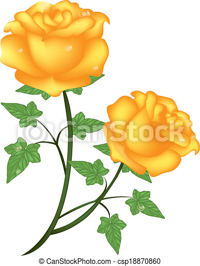 yellow roses is a eps 10 illustrator file without background rh canstockphoto com yellow rose clip art free transparent yellow rose clip art transparent