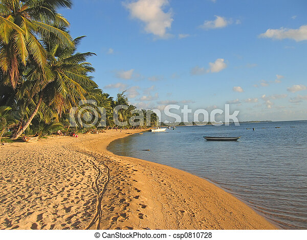 Yellow sand beach with palm trees, Nosy Boraha, Sainte,Marie island, Madagascar - csp0810728
