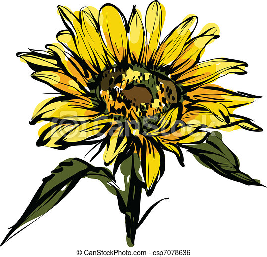 yellow sunflower design - csp7078636