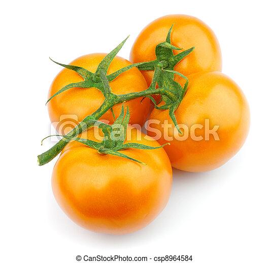 Yellow tomato - csp8964584