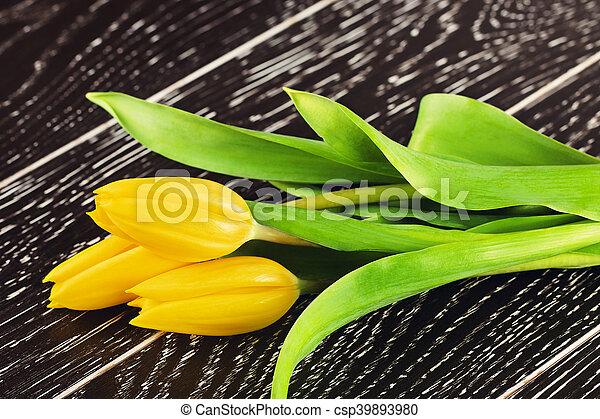 Yellow Tulip Flowers - csp39893980