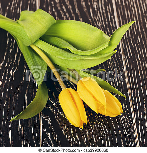 Yellow Tulip Flowers - csp39920868