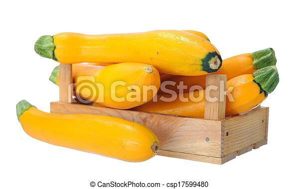 yellow zucchini - csp17599480
