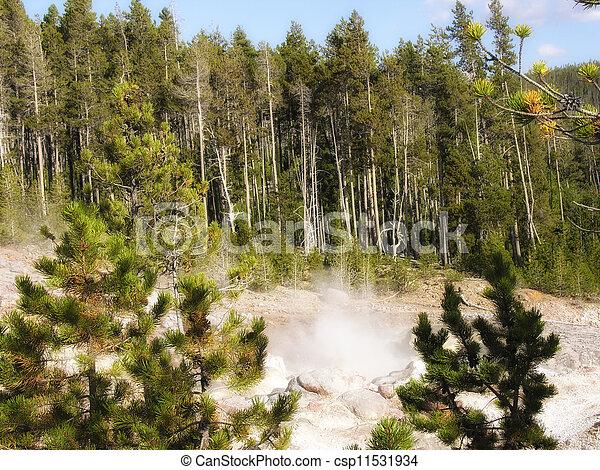 Yellowstone Geyser - csp11531934