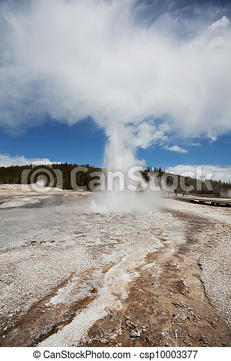 yellowstone - csp10003377