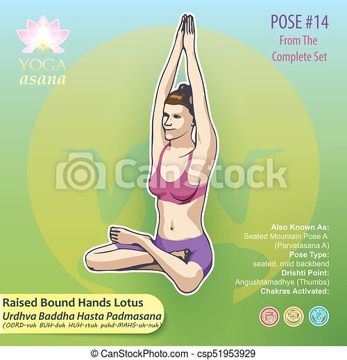 Yoga Hands Lotus Pose Pose 14 Vector Illustration Of Yoga Exercises With Full Text Description Names And Symbols Of The