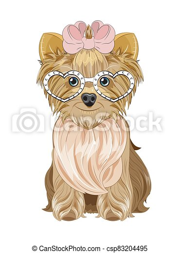 Yorkshire terrier dog in heart sunglasses - csp83204495