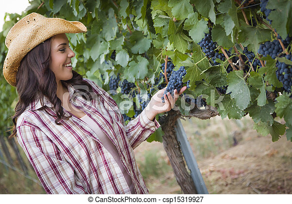 Young Adult Female Farmer Inspecting Grapes in Vineyard - csp15319927