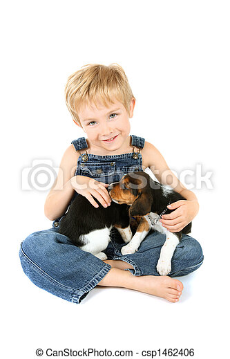 Young boy sitting with Beagle puppies on his lap - csp1462406