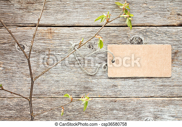 Young branch with blank tag - csp36580758