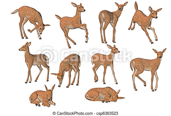 fawn illustrations and clipart 1155 fawn royalty free illustrations and drawings available to search from thousands of stock vector eps clip art graphic