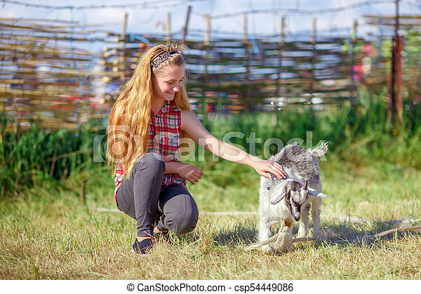 young girl playing with a small baby goat - csp54449086