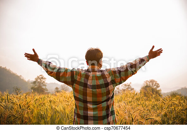 Young man farmer in scott shirt standing arms raised in a field of barley or wheat crops at sunset or sunrise - csp70677454