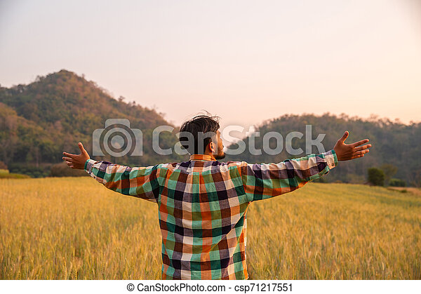 Young man farmer in scott shirt standing arms raised in a field of barley or wheat crops at sunset or sunrise - csp71217551