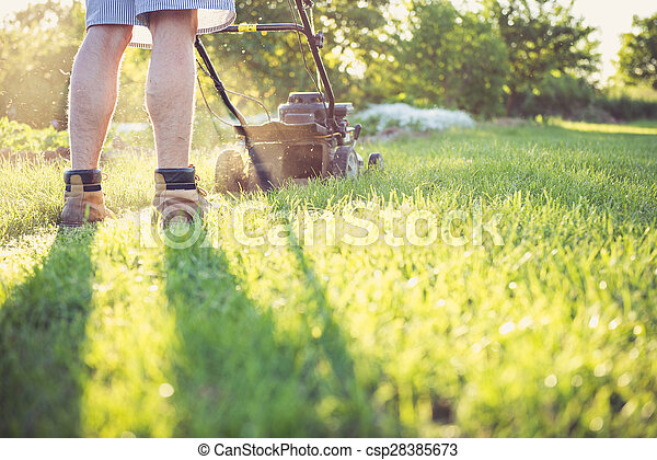 Young man mowing the grass - csp28385673